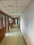 Pavimenti in linoleum 9 -